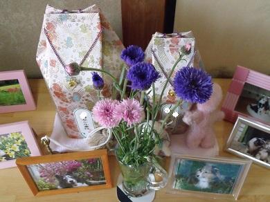 0413flower2.jpg