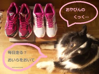 0702shoes1.jpg