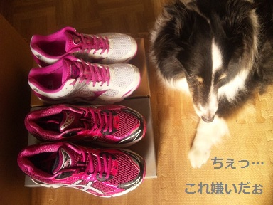 0702shoes2.jpg