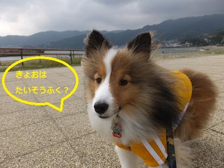 141011nagahama1.jpg