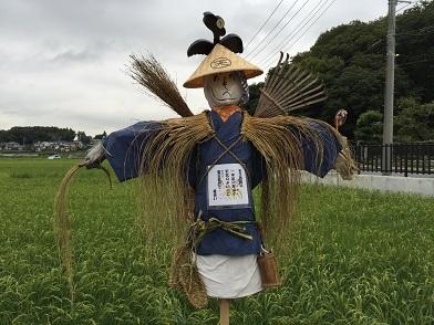 1509kakashi1.jpg
