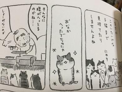 170308neko2.jpg